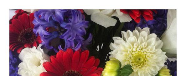 Red gerbera, white chrysanthemum and blue flower