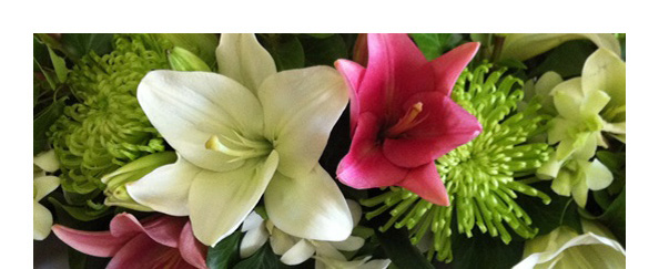 Pink & white lilies and disbuds