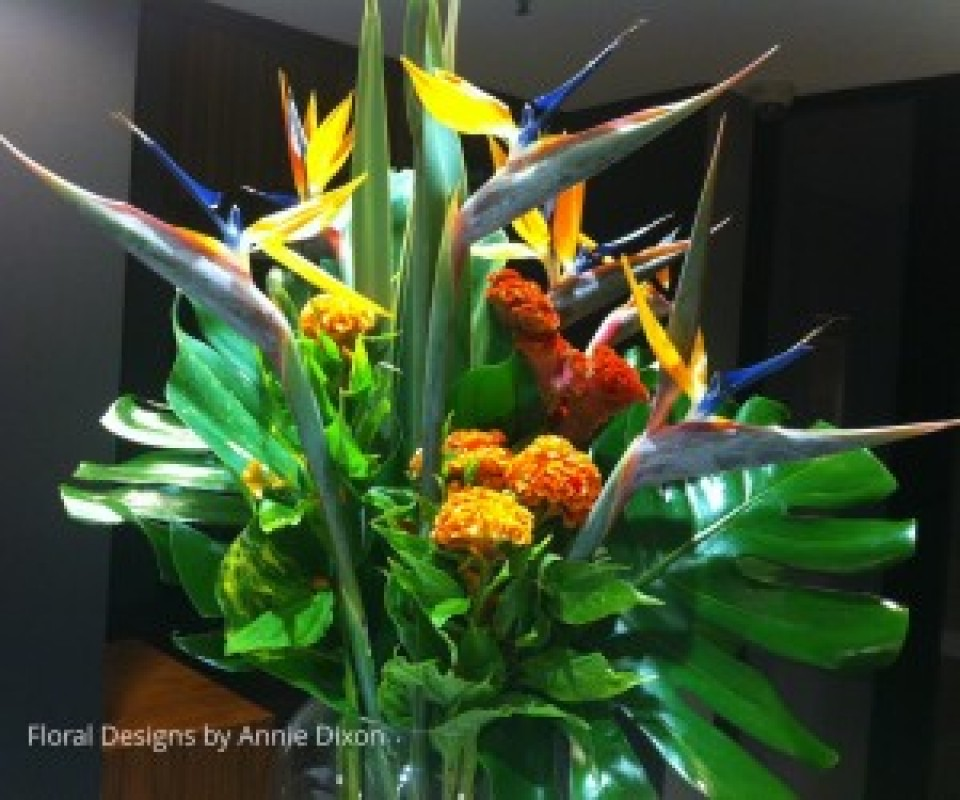 Arrangement of Birds of Paradise and Celosia