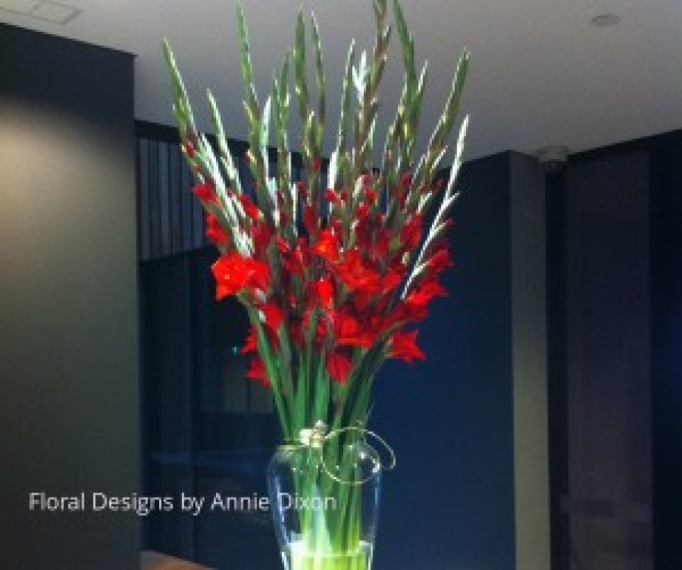 Christmas arrangement of red gladioli