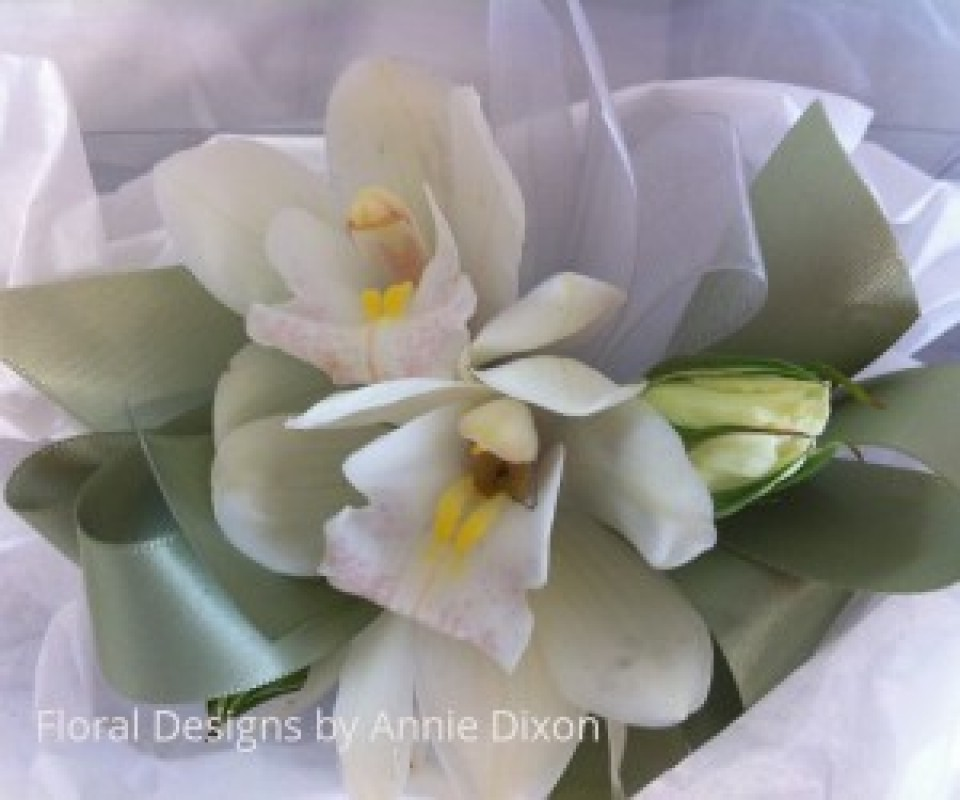 Cymbidium corsage with sage ribbon
