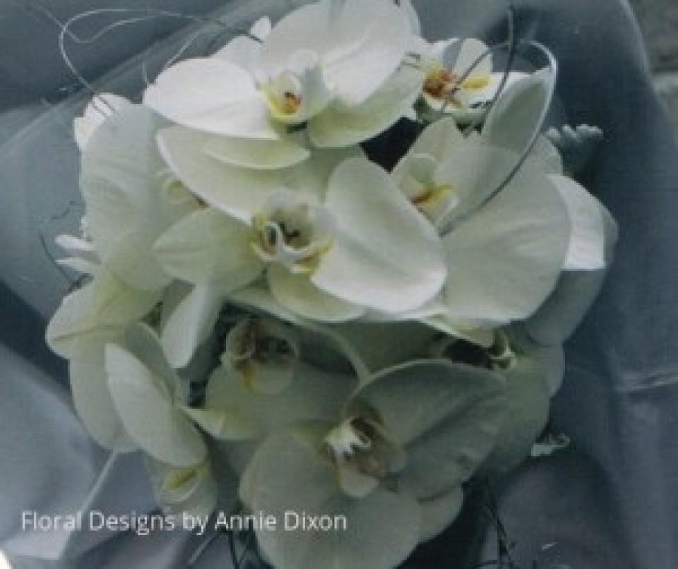 Teardrop bouquet of Phalaenopsis orchids