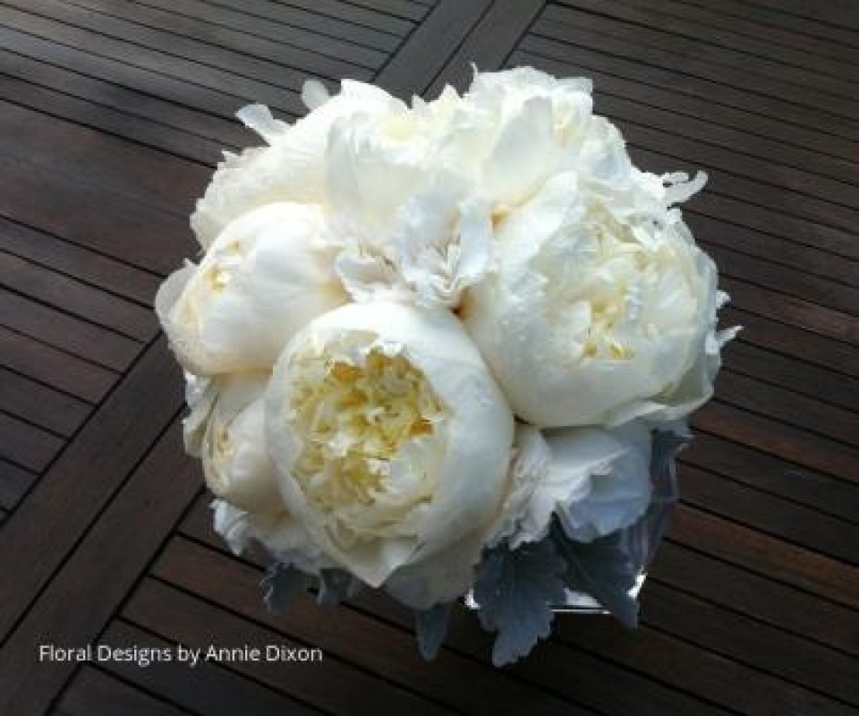 Compact arrangement of half open peony roses